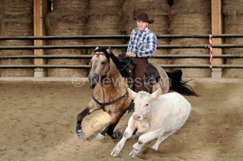 2013-9-Valeille-Reined-Cow-Horse34-Michel-Pourras-2 (800x533)