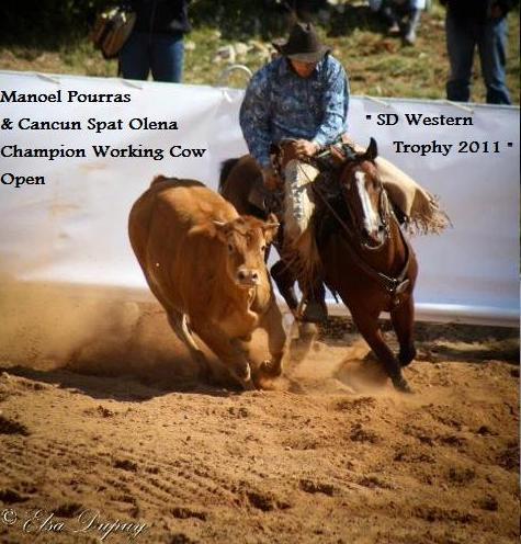 Champion SD Western 2011 (475x496)