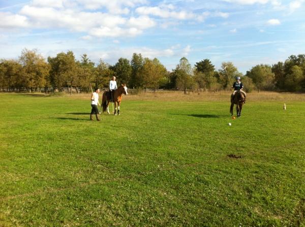 Cours de polo rhone