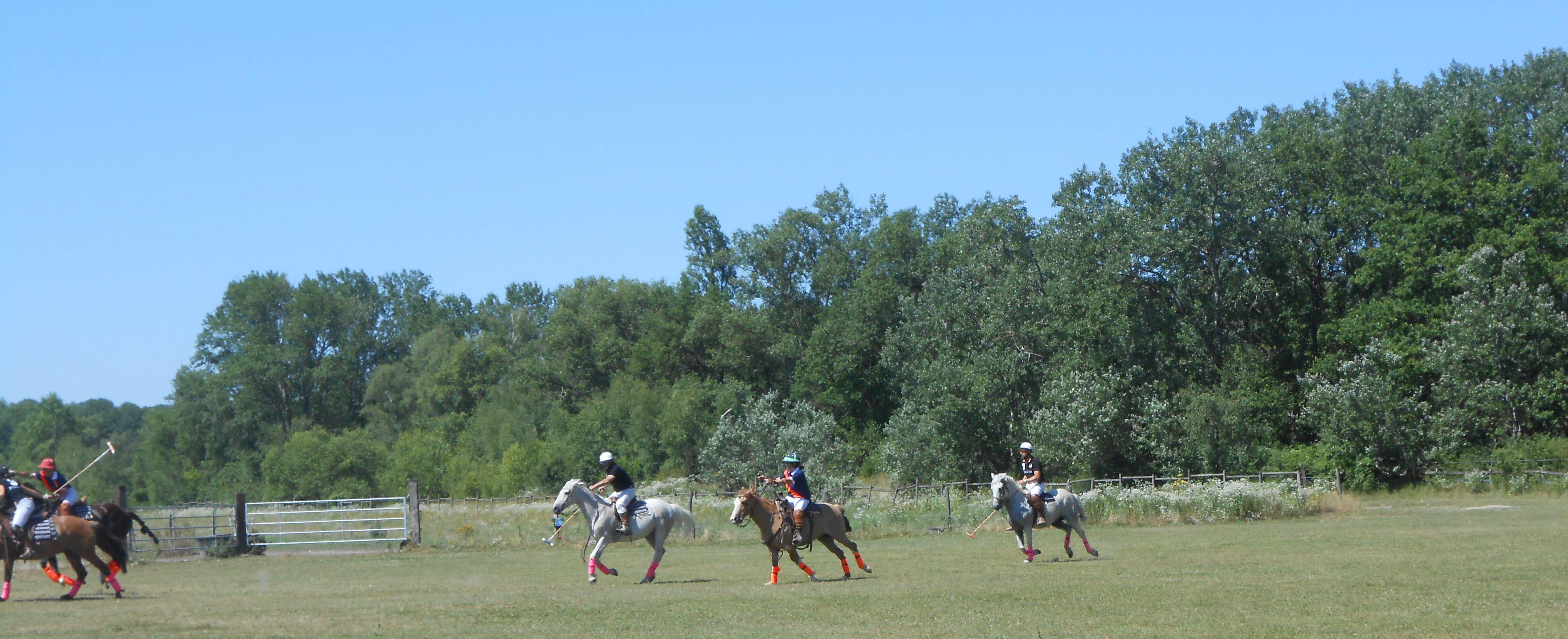 Ranch 280615 (12)
