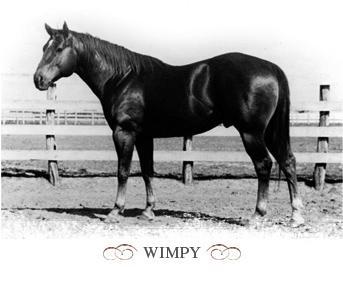 wimpy1