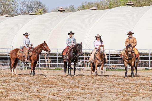 Les Pourras - Quarter Horse