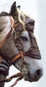 protection cheval